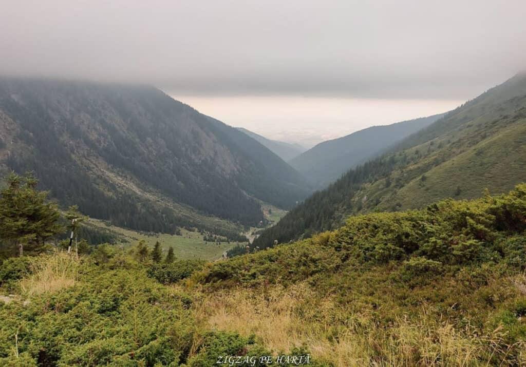Vârful Dara (2500m) și Vârful Hârtopul Darei (2504m) - Blog de calatorii - ZIGZAG PE HARTĂ - 25917 101453 19