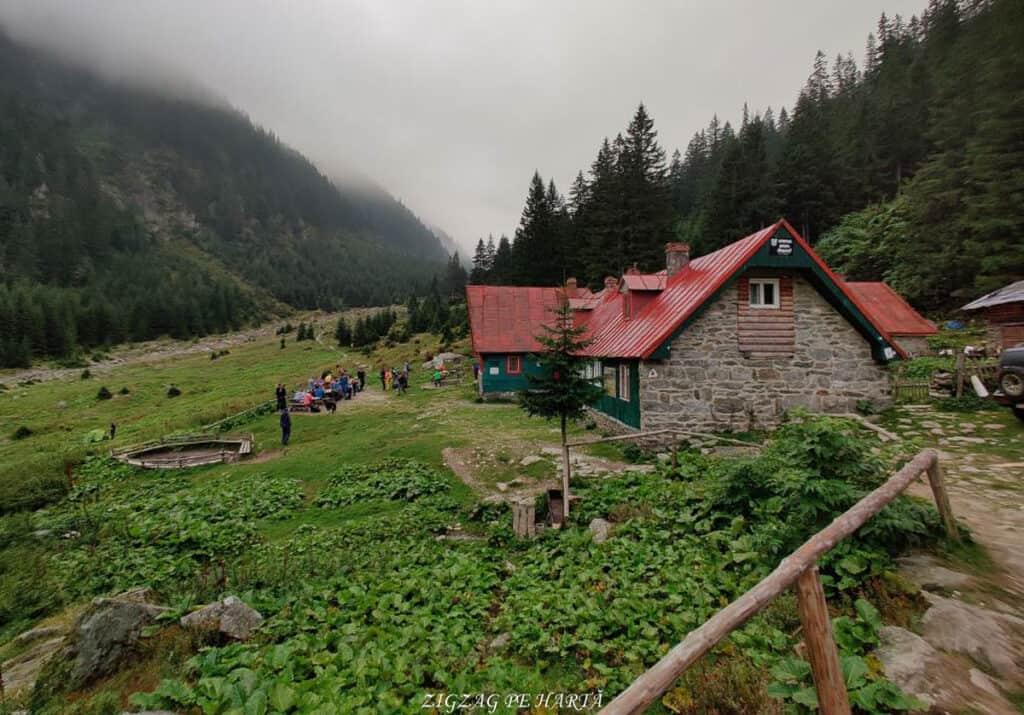 Vârful Dara (2500m) și Vârful Hârtopul Darei (2504m) - Blog de calatorii - ZIGZAG PE HARTĂ - 25917 101453 22