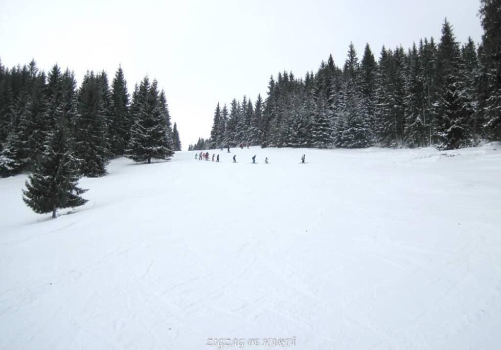 Pârtia Dealu Negru din Vatra Dornei - Blog de calatorii - ZIGZAG PE HARTĂ - 25917 76129 15