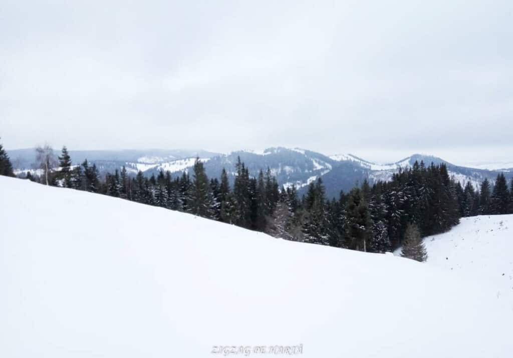 Pârtia Dealu Negru din Vatra Dornei - Blog de calatorii - ZIGZAG PE HARTĂ - 25917 76129 9