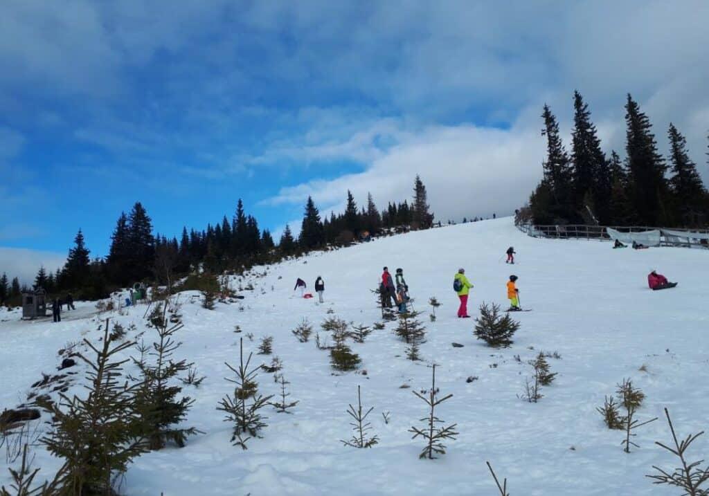 Buscat ski Resort din Cluj - Blog de calatorii - ZIGZAG PE HARTĂ - 25917 84007 27