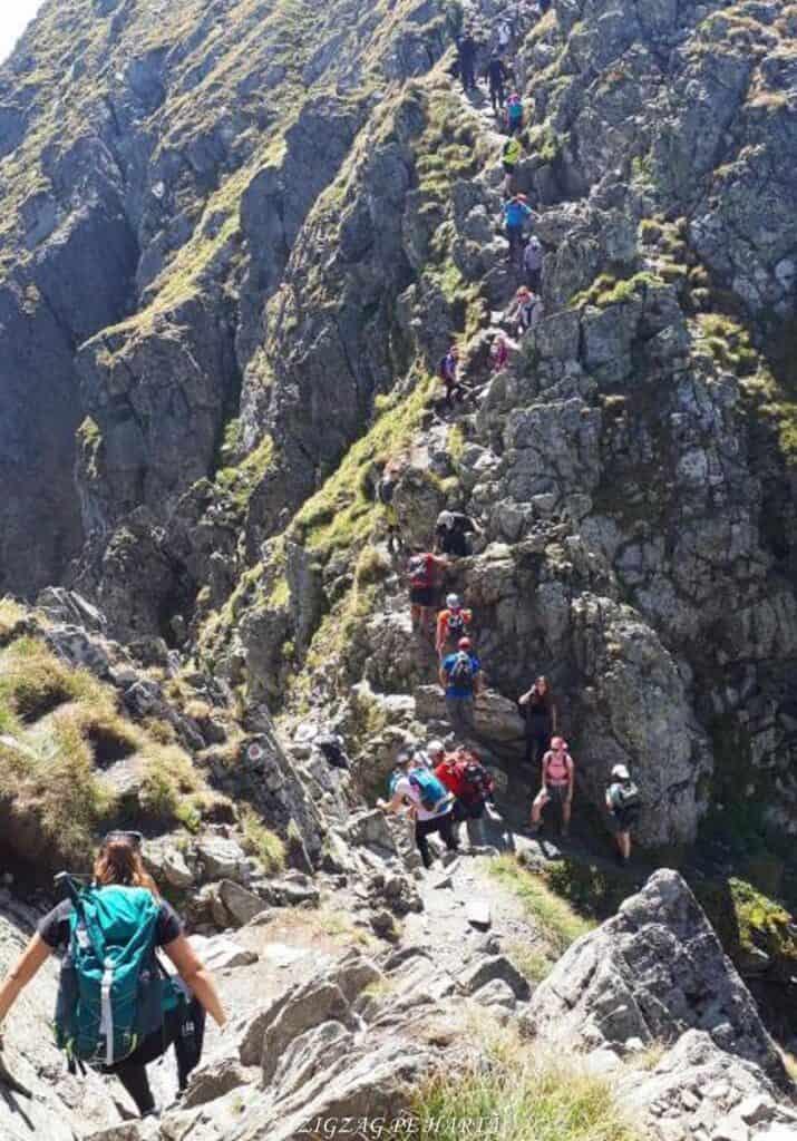 Vârful Moldoveanu - 2544m - Blog de calatorii - ZIGZAG PE HARTĂ - 25917 96470 13 1