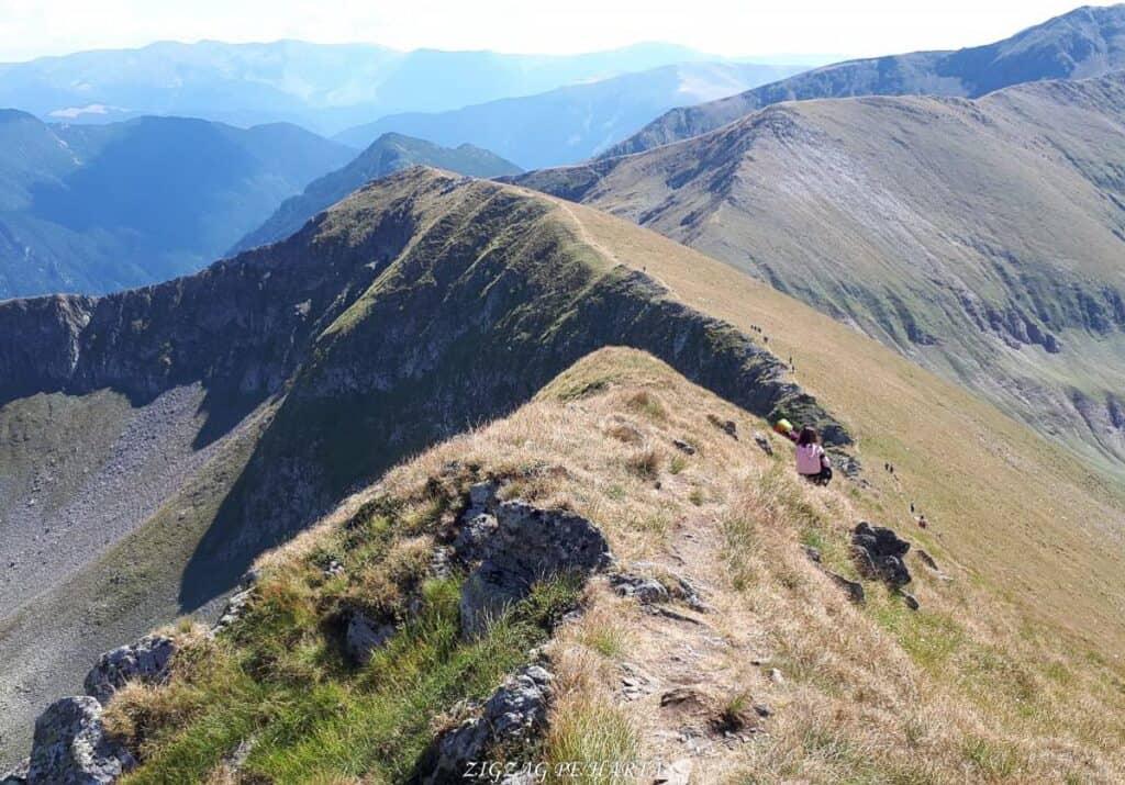 Vârful Moldoveanu - 2544m - Blog de calatorii - ZIGZAG PE HARTĂ - 25917 96470 24