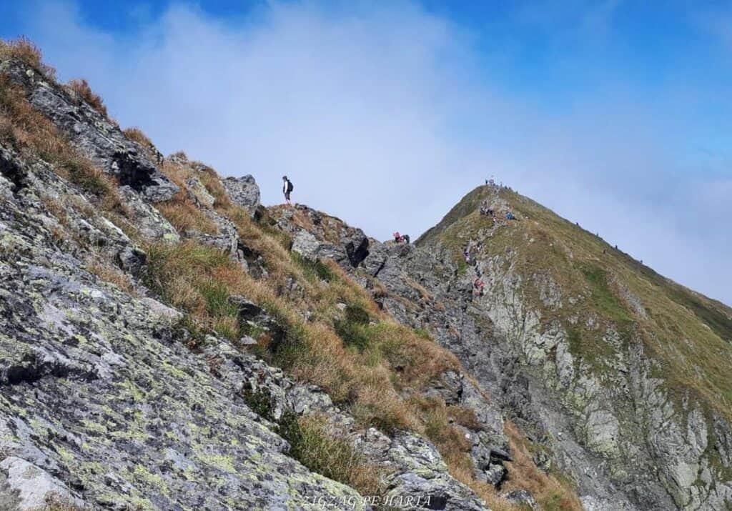 Vârful Moldoveanu - 2544m - Blog de calatorii - ZIGZAG PE HARTĂ - 25917 96470 27