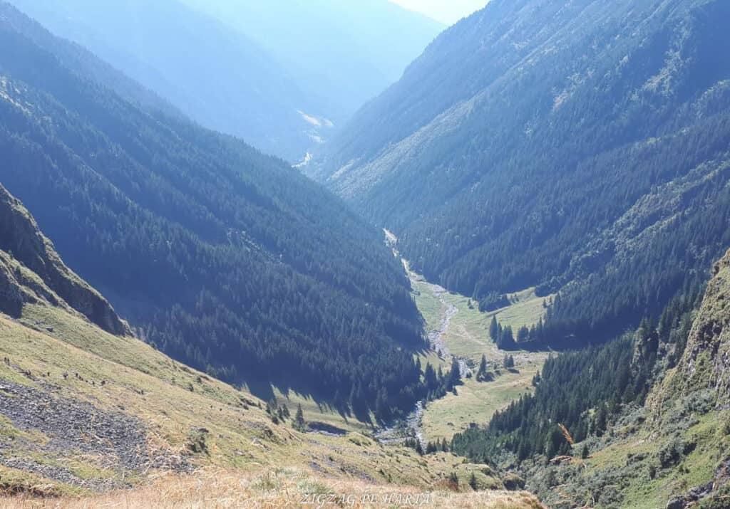 Vârful Moldoveanu - 2544m - Blog de calatorii - ZIGZAG PE HARTĂ - 25917 96470 29