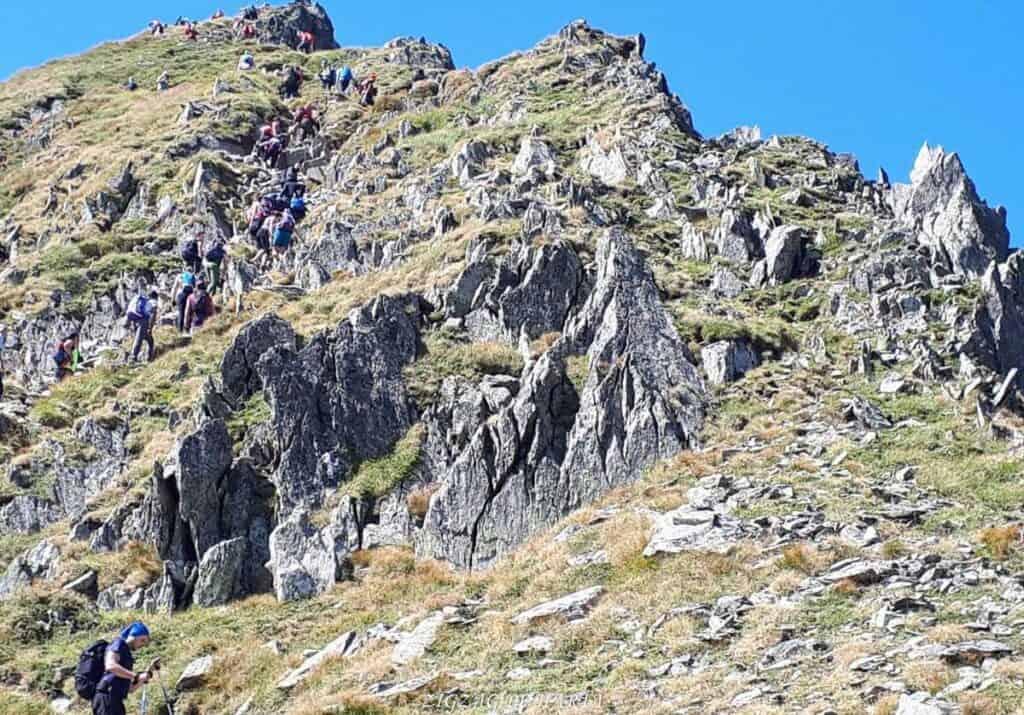 Vârful Moldoveanu - 2544m - Blog de calatorii - ZIGZAG PE HARTĂ - 25917 96470 9