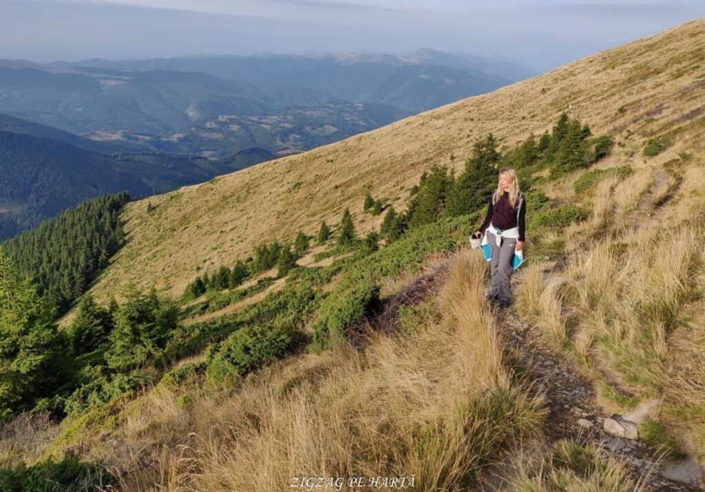 Vârful Parângul Mare (2519 m), Vârful Cârja (2405 m) și Vârful Parângul Mic (2074 m) - Blog de calatorii - ZIGZAG PE HARTĂ - 25917 96624 10