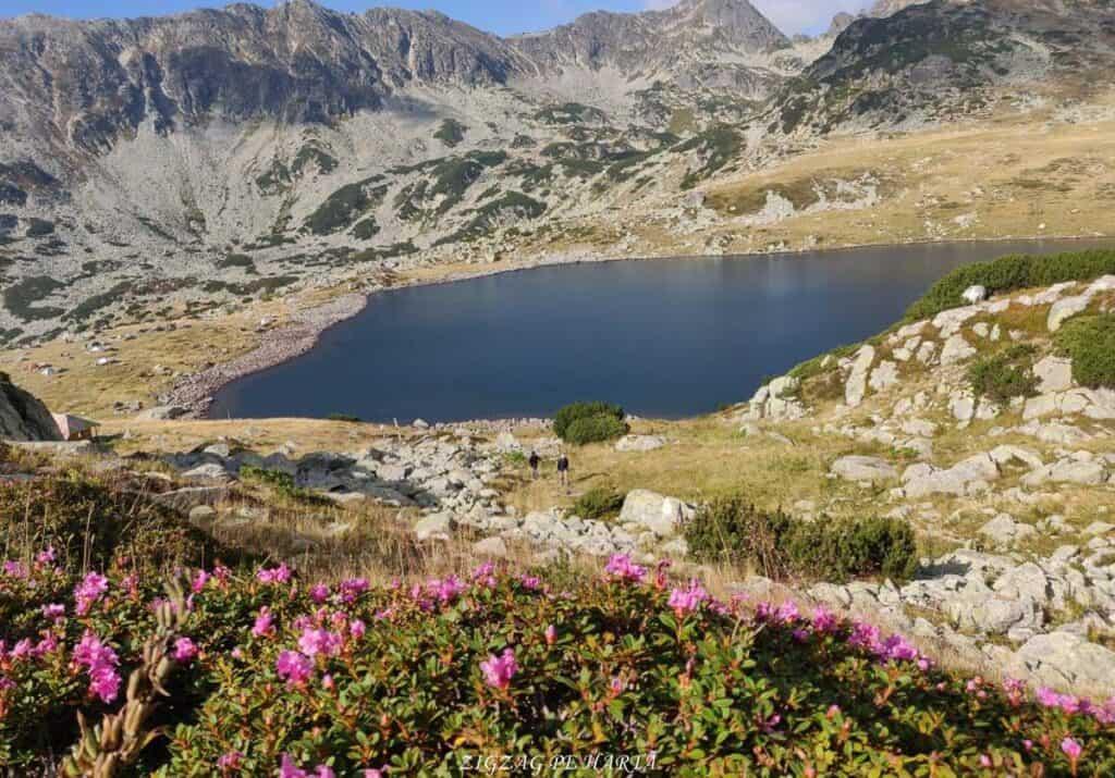 Vârful Peleaga 2509m și Vârful Păpușa 2508m - Blog de calatorii - ZIGZAG PE HARTĂ - 25917 96757 1