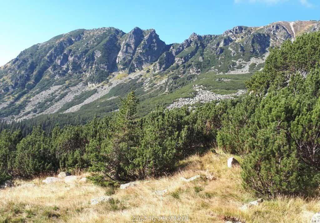Vârful Peleaga 2509m și Vârful Păpușa 2508m - Blog de calatorii - ZIGZAG PE HARTĂ - 25917 96757 21