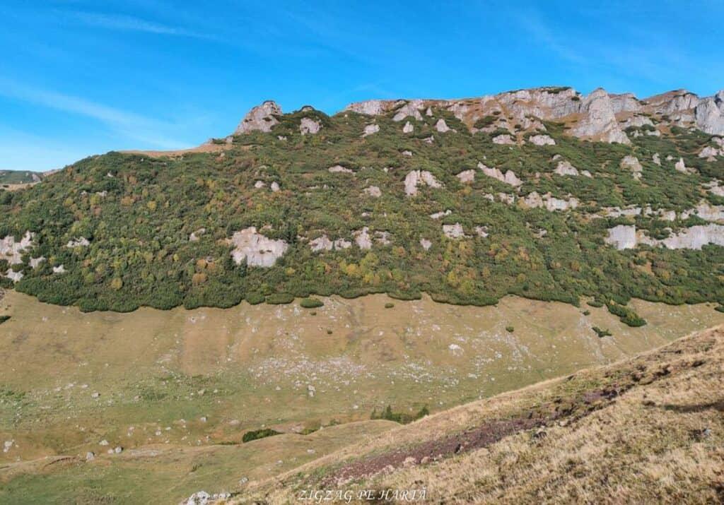 Vârful Omu, Bucura Dumbrava și Capul Morarului - Blog de calatorii - ZIGZAG PE HARTĂ - 25917 97074 3