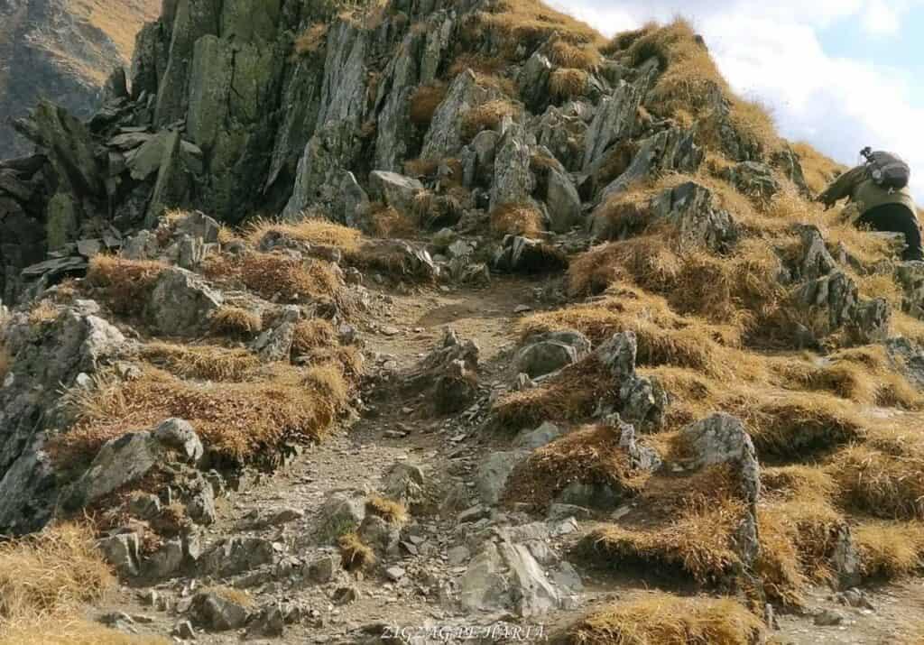 Vânătarea lui Buteanu 2507metri - Blog de calatorii - ZIGZAG PE HARTĂ - 25917 97691 15