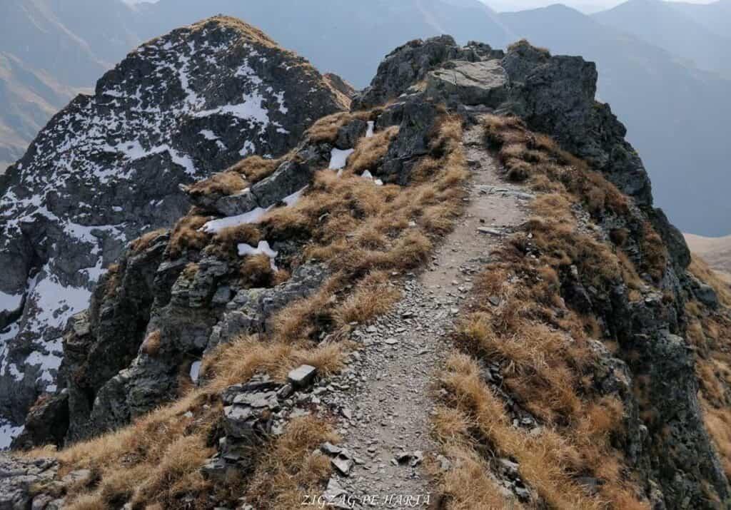 Vânătarea lui Buteanu 2507metri - Blog de calatorii - ZIGZAG PE HARTĂ - 25917 97691 22