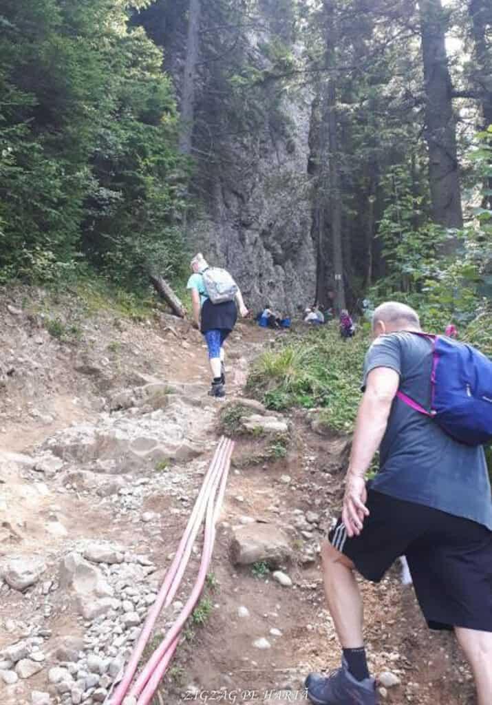 Vârful Toaca 1904 m. din M-ții Ceahlău - Blog de calatorii - ZIGZAG PE HARTĂ - 25917 98150 25