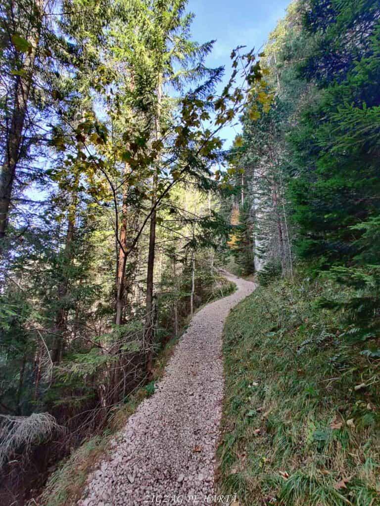 Vârful Suhardul Mic (1345 m.)din Lacul Roșu - Blog de calatorii - ZIGZAG PE HARTĂ - IMG 20201023 135504 01