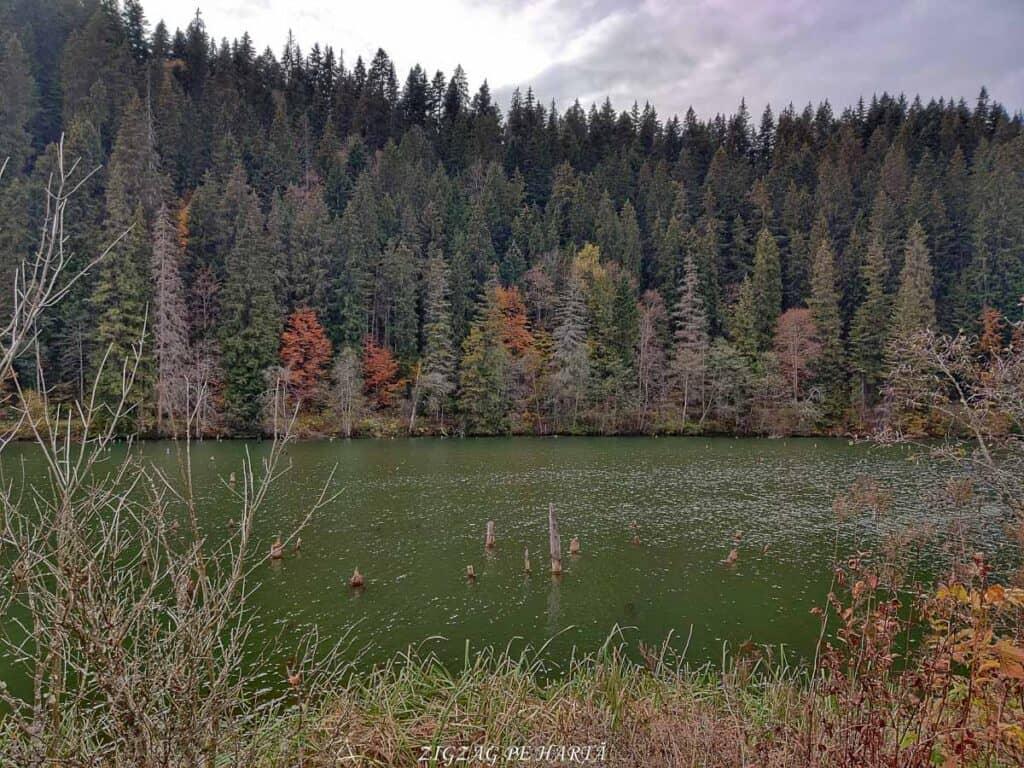 Circuitul Lacului Roșu - Blog de calatorii - ZIGZAG PE HARTĂ - IMG 20201024 160638 01