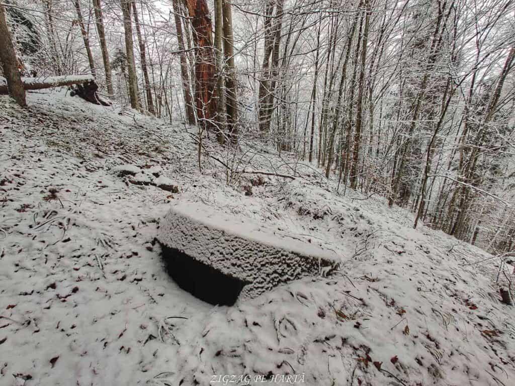 Cazemate, tranșee, cuiburi de mitraliere și alte rămășițe din Al Doilea Razboi Mondial - Blog de calatorii - ZIGZAG PE HARTĂ - IMG 20210109 111045 01