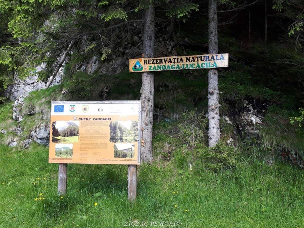 Cascada 7 izvoare, Lacul Scropoasa și Cheile Zănoagei - Blog de calatorii - ZIGZAG PE HARTĂ - 20190616 094233