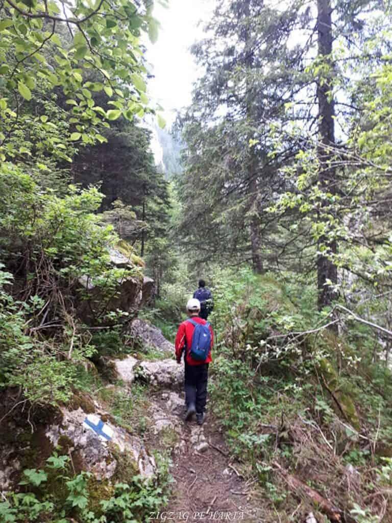 Cascada 7 izvoare, Lacul Scropoasa și Cheile Zănoagei - Blog de calatorii - ZIGZAG PE HARTĂ - 20190616 095409
