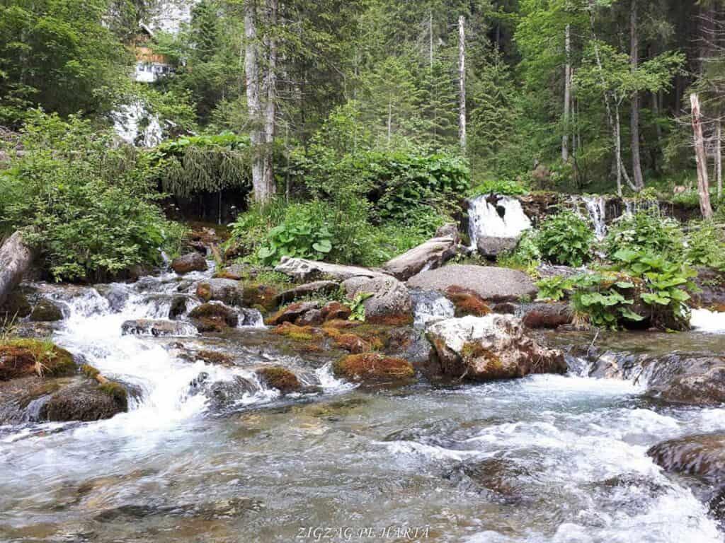 Cascada 7 izvoare, Lacul Scropoasa și Cheile Zănoagei - Blog de calatorii - ZIGZAG PE HARTĂ - 20190616 112606