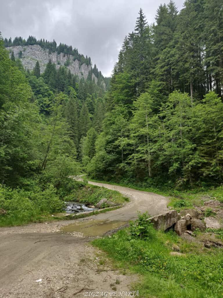 Cascada 7 izvoare, Lacul Scropoasa și Cheile Zănoagei - Blog de calatorii - ZIGZAG PE HARTĂ - IMG 20190616 114425