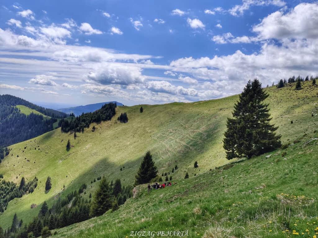 Poiana cu narcise din munții Rodnei - Blog de calatorii - ZIGZAG PE HARTĂ - IMG 20200523 143318 01
