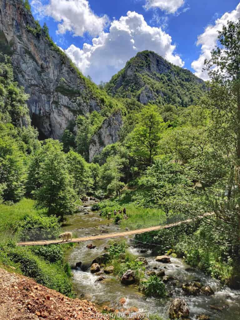 Peștera Huda lui Papară - Troița- Vânătările Ponorului- Cascada Vânătarile Ponorului - Blog de calatorii - ZIGZAG PE HARTĂ - IMG 20200620 140516 01