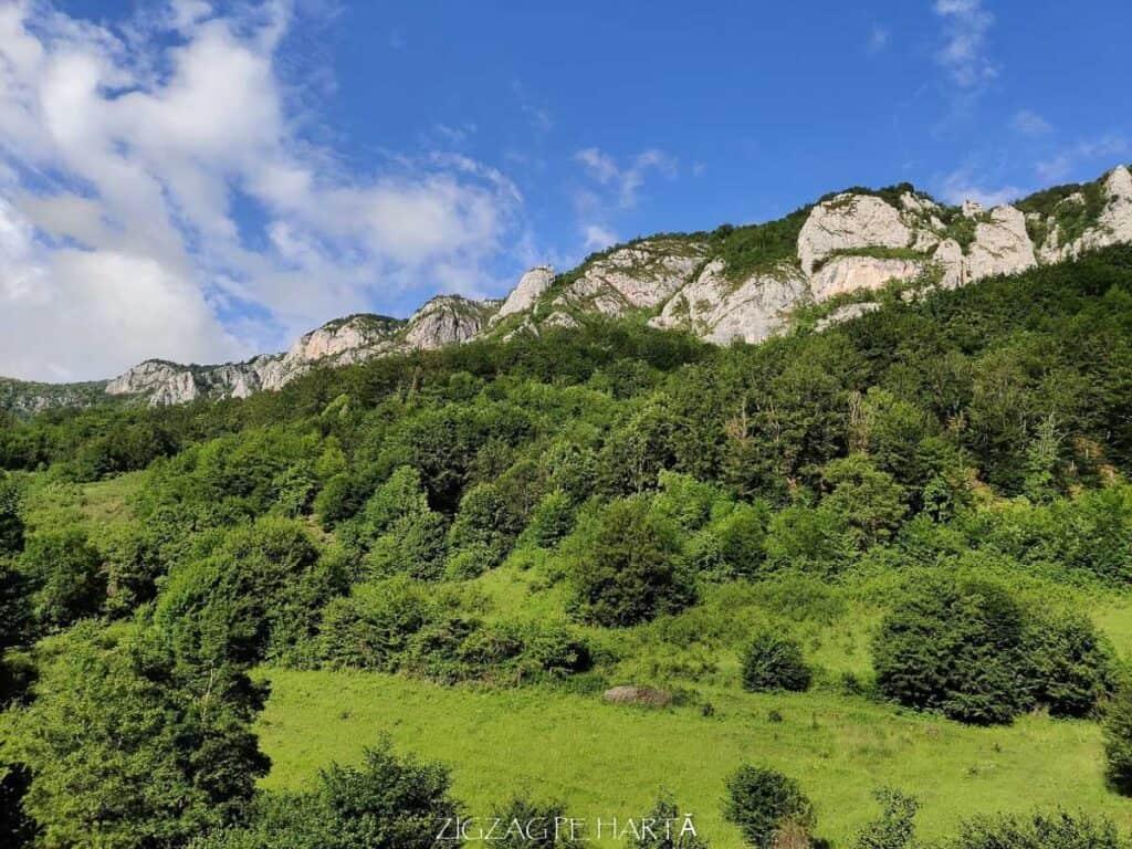 Cascada Șipote din Munții Trascăului - Blog de calatorii - ZIGZAG PE HARTĂ - IMG 20200620 182212