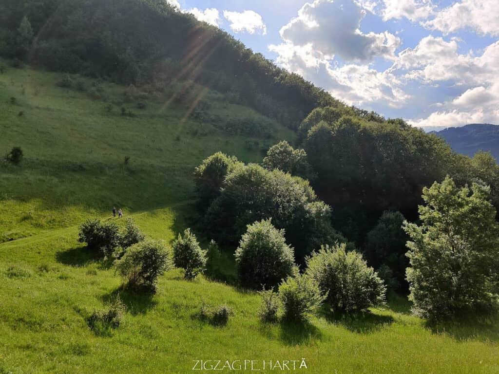 Cascada Șipote din Munții Trascăului - Blog de calatorii - ZIGZAG PE HARTĂ - IMG 20200620 182403