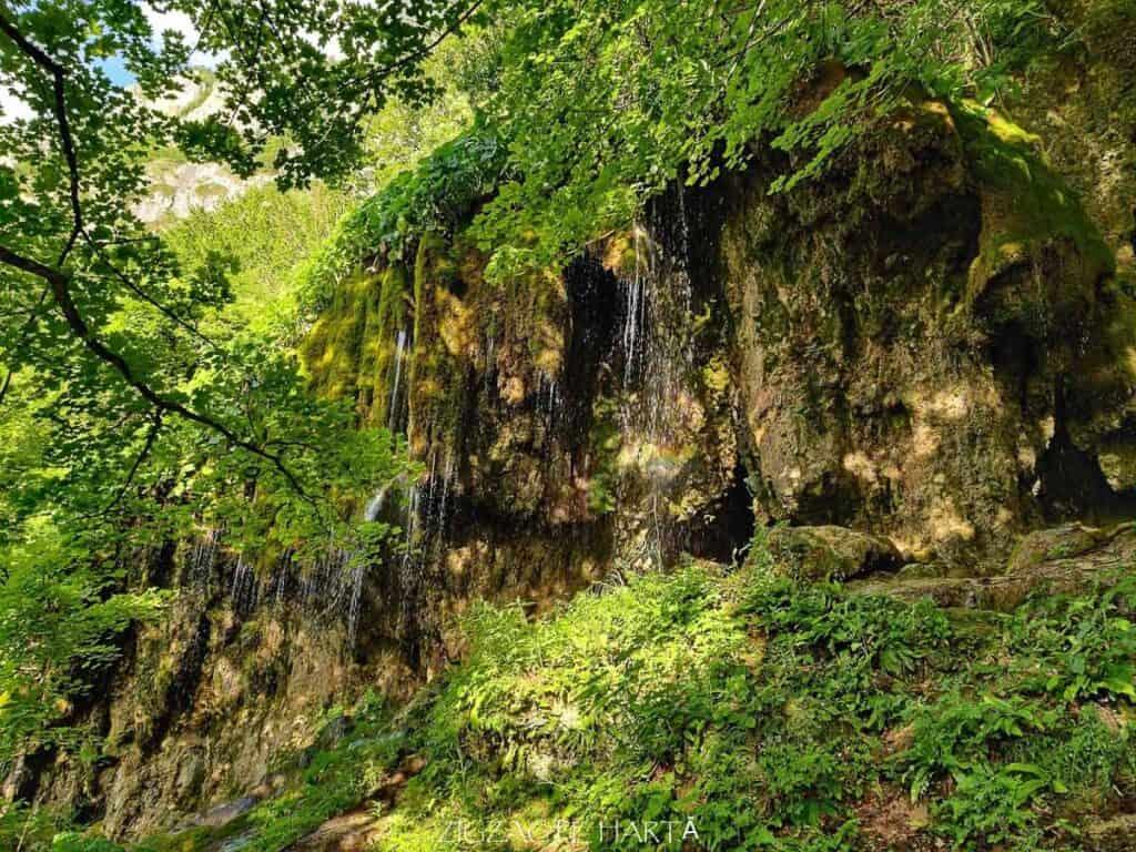 Cascada Șipote din Munții Trascăului - Blog de calatorii - ZIGZAG PE HARTĂ - IMG 20200620 185328 01