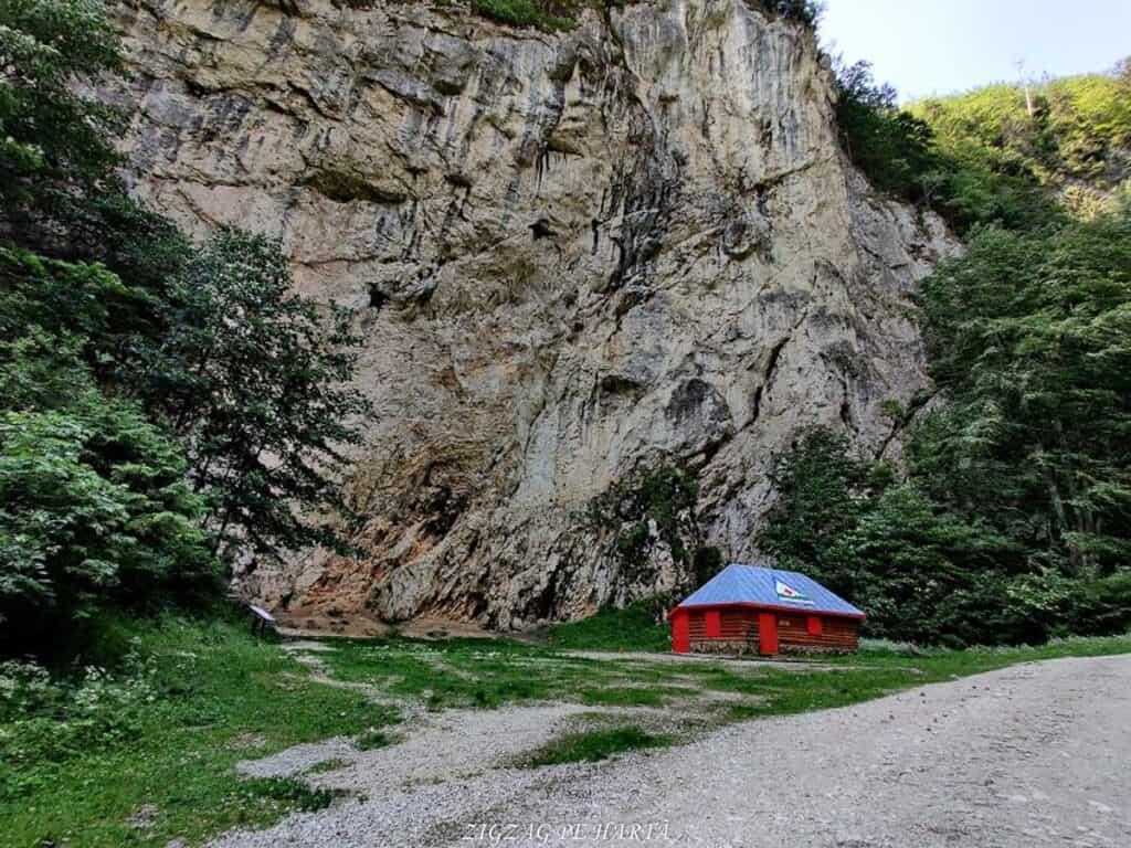 Traseu prin Prăpăstiile Zărneștilor până la Cabana Curmătura, din Parcul Național Piatra Craiului - Blog de calatorii - ZIGZAG PE HARTĂ - IMG 20200627 102725