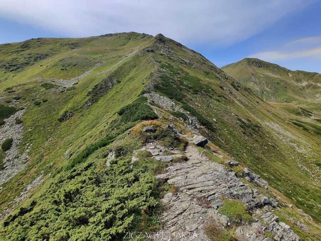 Circuit Vârful Ineuț (2.222m), Vârful Ineu (2.278m), Lacul Lala Mică (1.900m) și Lacul Lala Mare (1.815m) - Blog de calatorii - ZIGZAG PE HARTĂ - IMG 20200829 124011