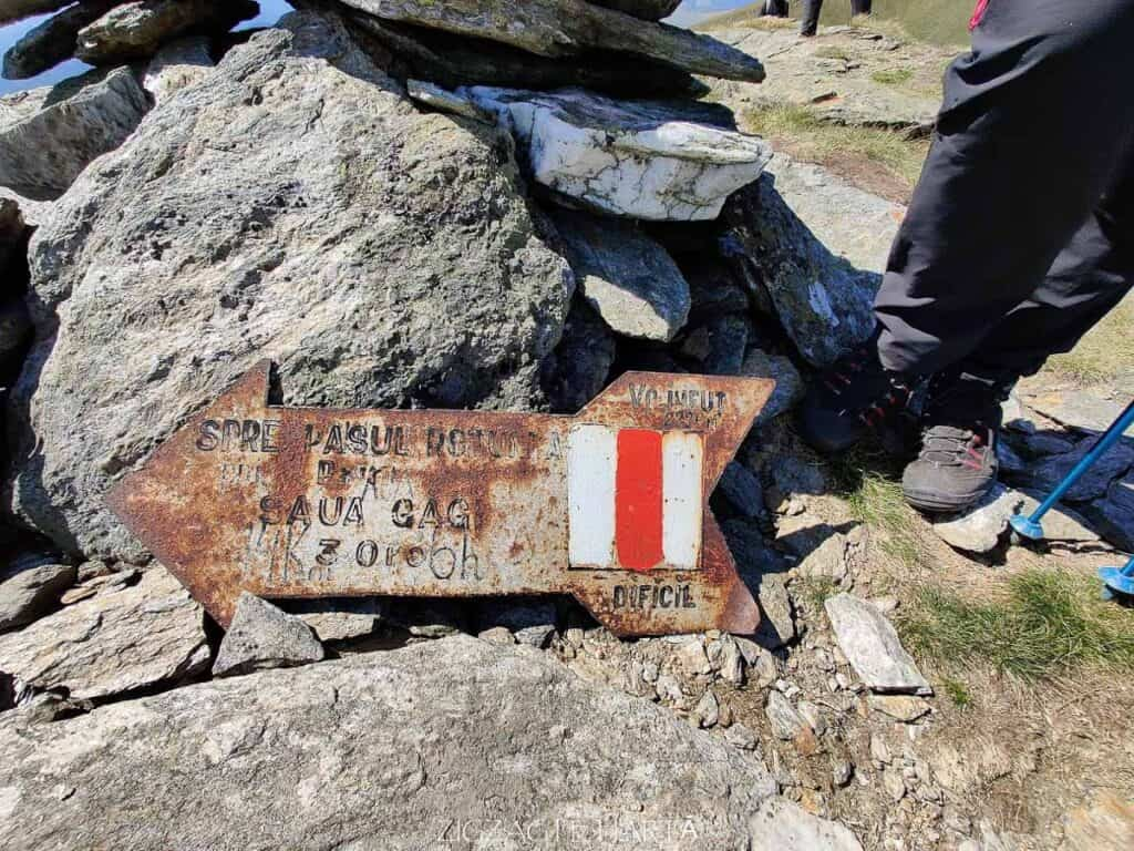 Circuit Vârful Ineuț (2.222m), Vârful Ineu (2.278m), Lacul Lala Mică (1.900m) și Lacul Lala Mare (1.815m) - Blog de calatorii - ZIGZAG PE HARTĂ - IMG 20200829 133549