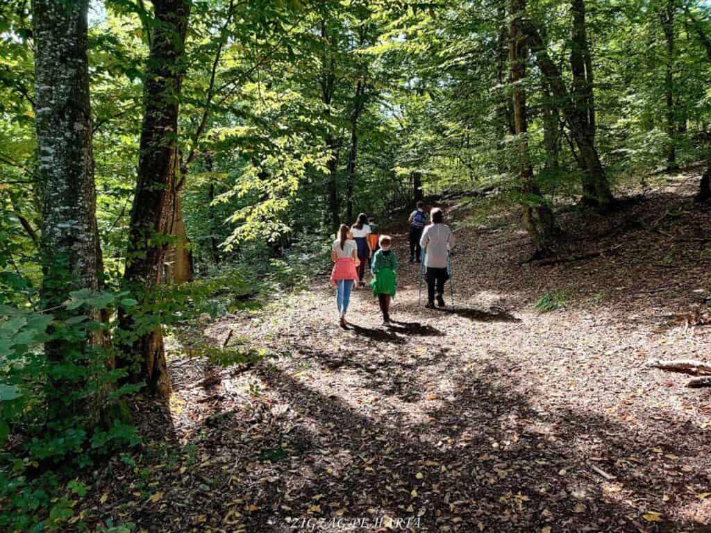 Piatra lui Lucaci din Munții Gilăului - Blog de calatorii - ZIGZAG PE HARTĂ - IMG 20201003 122633