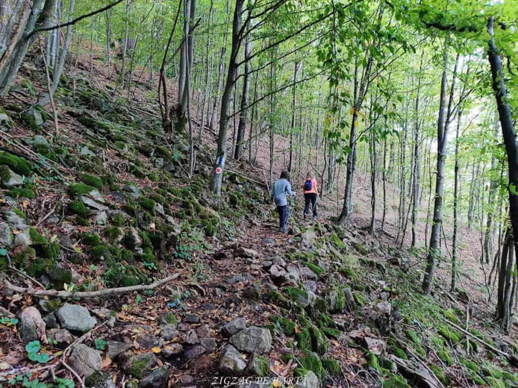 Piatra lui Lucaci din Munții Gilăului - Blog de calatorii - ZIGZAG PE HARTĂ - IMG 20201003 162236
