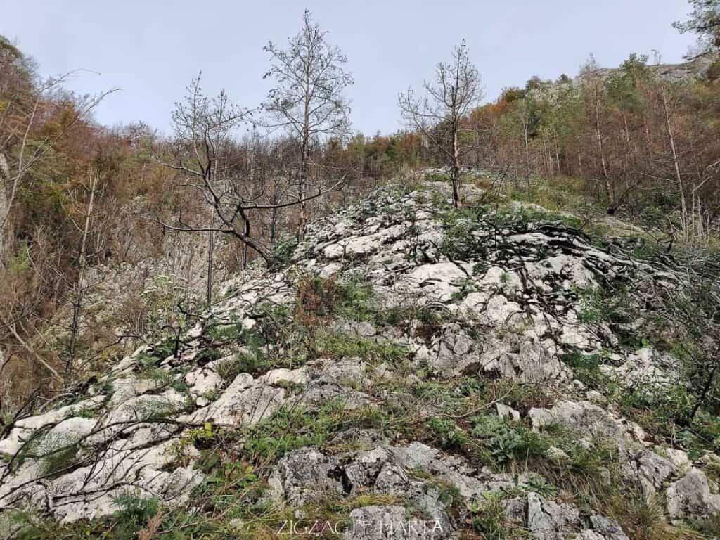Traseul turistic Scărița – Belioara - Blog de calatorii - ZIGZAG PE HARTĂ - IMG 20201010 104257