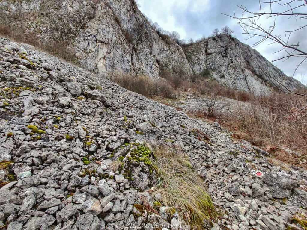 Drumeție pe versantul drept al Cheilor Vălișoarei - Blog de calatorii - ZIGZAG PE HARTĂ - IMG 20210206 113303 01