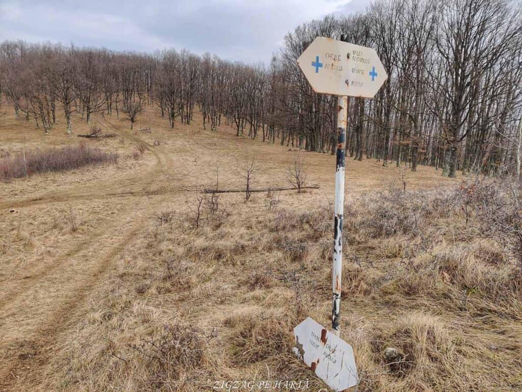 Circuitul versantului stâng din Cheile Vălișoarei și Vârful Data (884 m) - Blog de calatorii - ZIGZAG PE HARTĂ - IMG 20210227 121854 01 1
