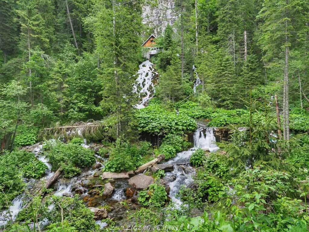 Cascada 7 izvoare, Lacul Scropoasa și Cheile Zănoagei - Blog de calatorii - ZIGZAG PE HARTĂ - OI000407 01