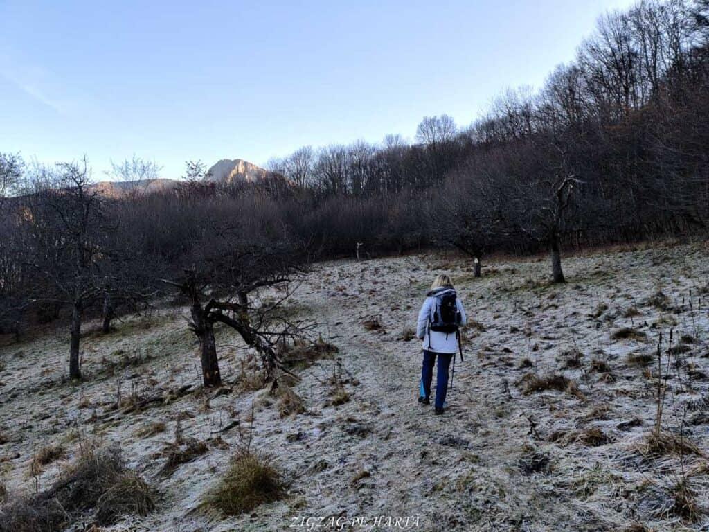 Vârful Berț și vârful Chișberț, traseu pe la minele de fier medievale de la Rimetea - Blog de calatorii - ZIGZAG PE HARTĂ - IMG 20210102 145135
