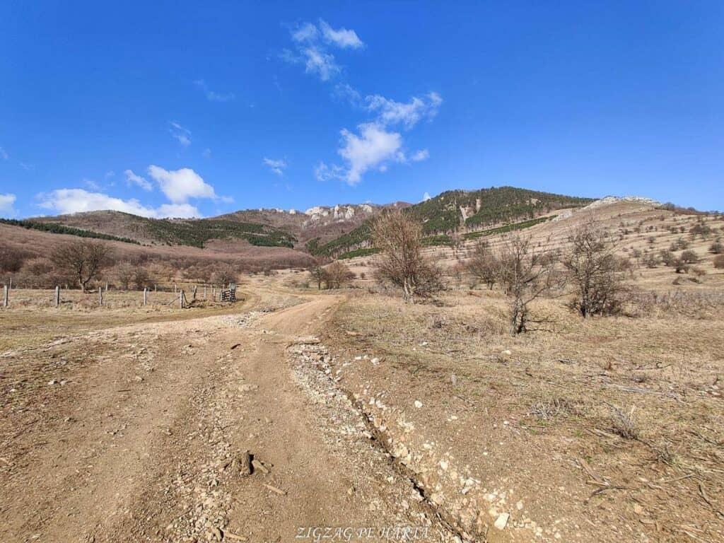 Vârful Ardașcheia 1250 metri din Munții Trascăului, jud. Alba - Blog de calatorii - ZIGZAG PE HARTĂ - IMG 20210306 101405 01