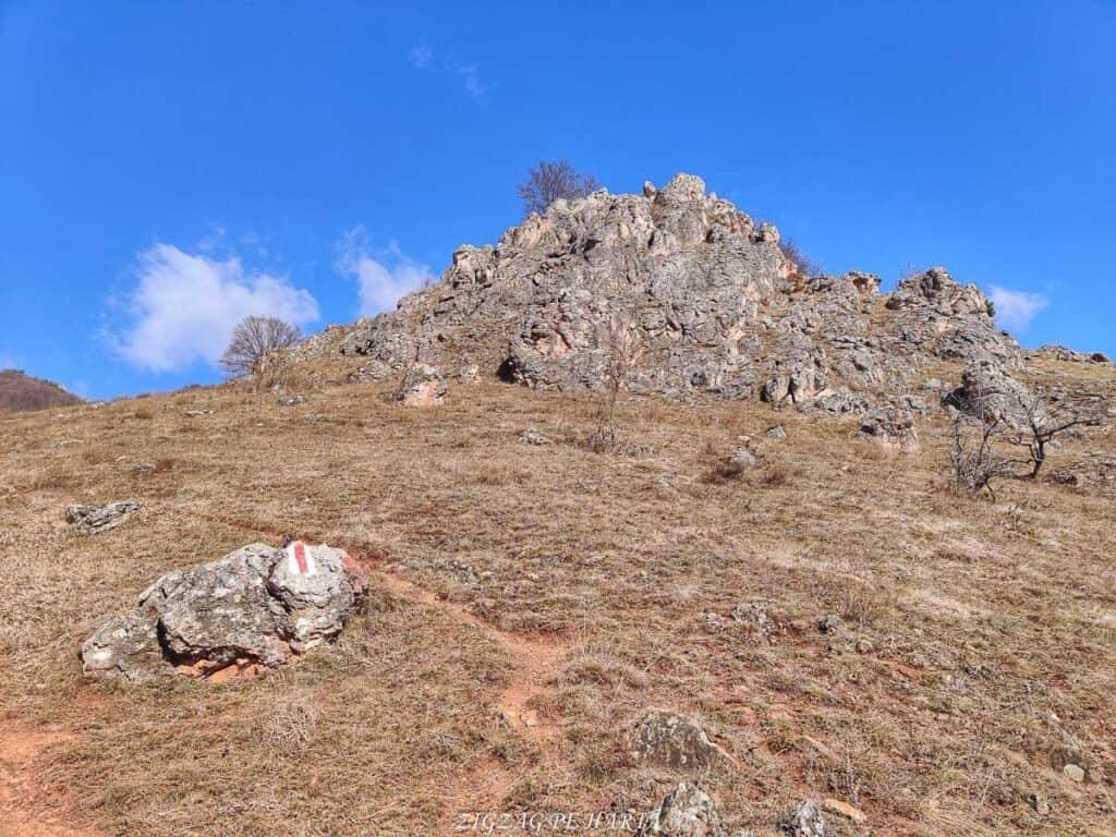 Vârful Ardașcheia 1250 metri din Munții Trascăului, jud. Alba - Blog de calatorii - ZIGZAG PE HARTĂ - IMG 20210306 105828 01