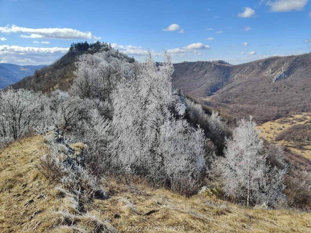 Vârful Ardașcheia 1250 metri din Munții Trascăului, jud. Alba - Blog de calatorii - ZIGZAG PE HARTĂ - IMG 20210306 120843 01