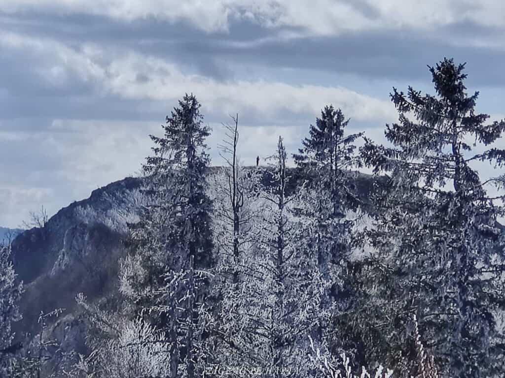 Vârful Ardașcheia 1250 metri din Munții Trascăului, jud. Alba - Blog de calatorii - ZIGZAG PE HARTĂ - IMG 20210306 132330 01