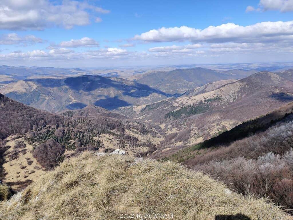 Vârful Ardașcheia 1250 metri din Munții Trascăului, jud. Alba - Blog de calatorii - ZIGZAG PE HARTĂ - IMG 20210306 132602