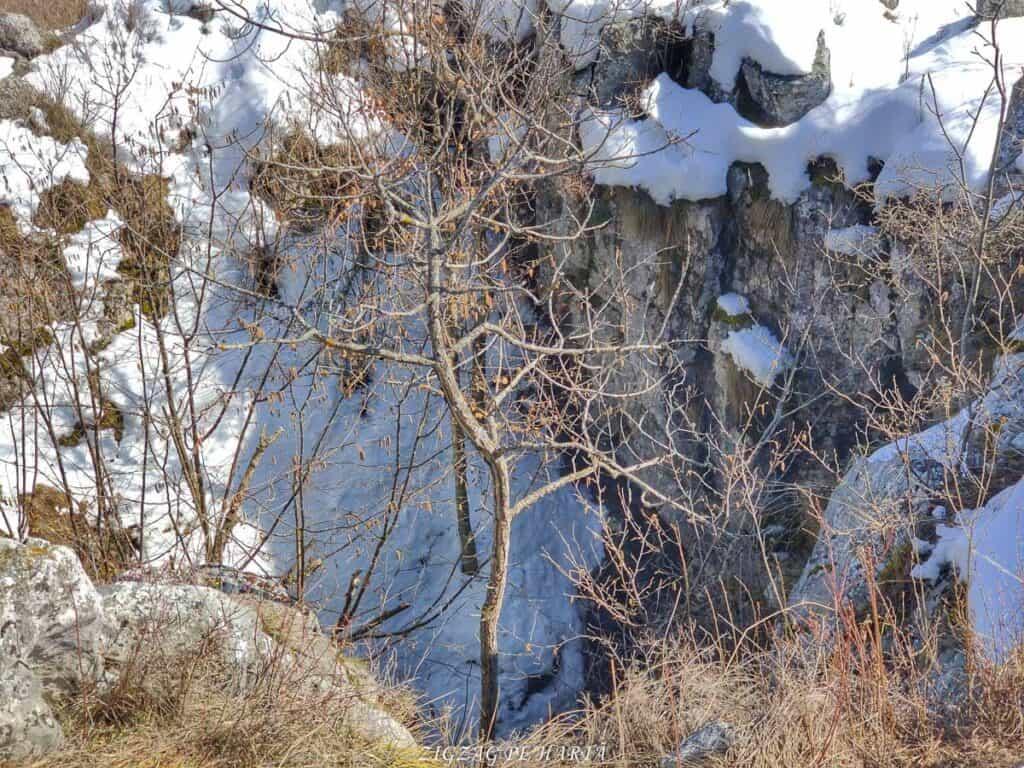 Piatra Cetii 1233m - Blog de calatorii - ZIGZAG PE HARTĂ - IMG 20210327 140239 01