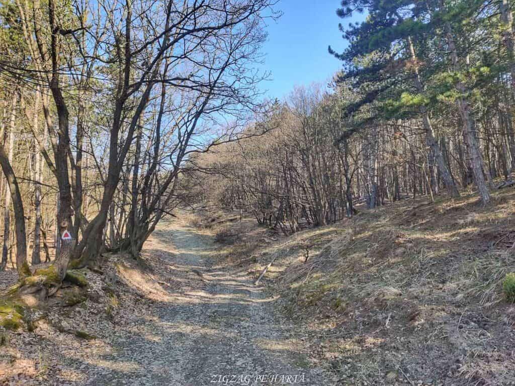 Piatra Craivii, 1083 m - Blog de calatorii - ZIGZAG PE HARTĂ - IMG 20210411 100846 01
