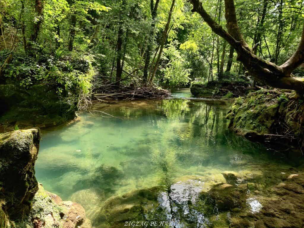 Lacul Ochiul Bei, Cascada Văioaga, Cascada Beușnița, La Tunele și Lacul Dracului - Blog de calatorii - ZIGZAG PE HARTĂ - IMG 20200727 151405