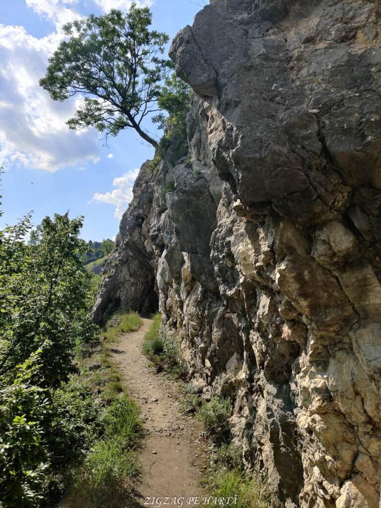 Lacul Ochiul Bei, Cascada Văioaga, Cascada Beușnița, La Tunele și Lacul Dracului - Blog de calatorii - ZIGZAG PE HARTĂ - IMG 20200727 164736