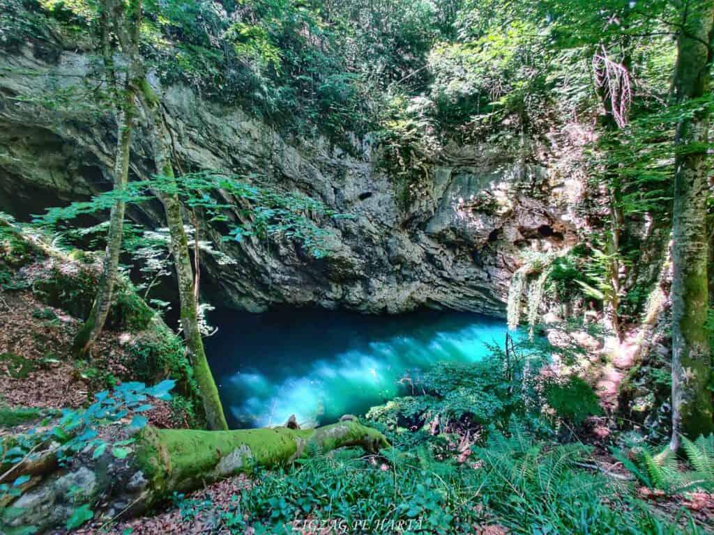 Lacul Ochiul Bei, Cascada Văioaga, Cascada Beușnița, La Tunele și Lacul Dracului - Blog de calatorii - ZIGZAG PE HARTĂ - IMG 20200729 125648 01