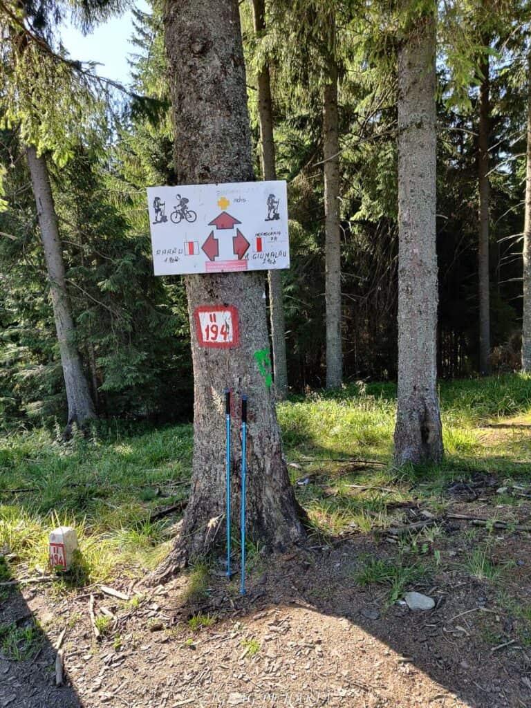 Vârful Giumalău 1858 metri - Blog de calatorii - ZIGZAG PE HARTĂ - IMG 20200806 093851